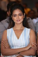Shanvi Looks super cute in Small Mini Dress at IIFA Utsavam Awards press meet 27th March 2017 65.JPG
