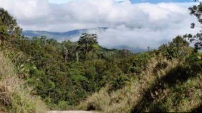 Wanita Hamil Dan Anak-Anak Jadi Korban Pembantaian Suku Di Papua Nugini