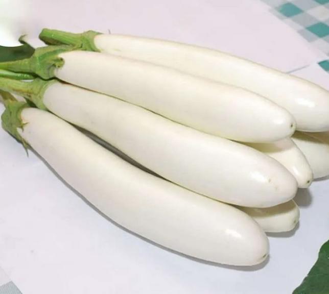 terong putih