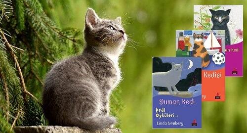 Linda Newbery - Kedi Öyküleri (Çocuk Kitapları)