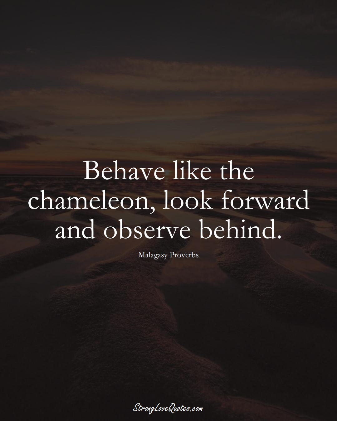 Behave like the chameleon, look forward and observe behind. (Malagasy Sayings);  #AfricanSayings