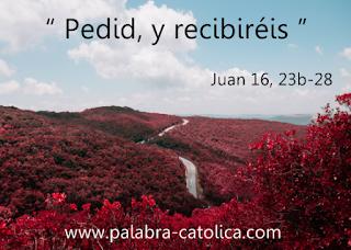 Evangelio del Día Sabado 1 de Junio - Lectura y Salmo de hoy