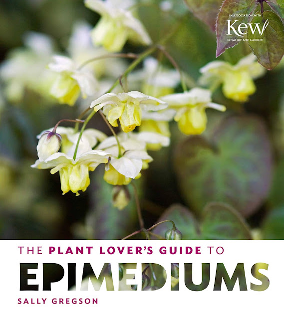 Plant Lovers Guide to Epimediums book cover
