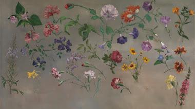 Studies of Flowers o algunas plantas de flor en la era victoriana