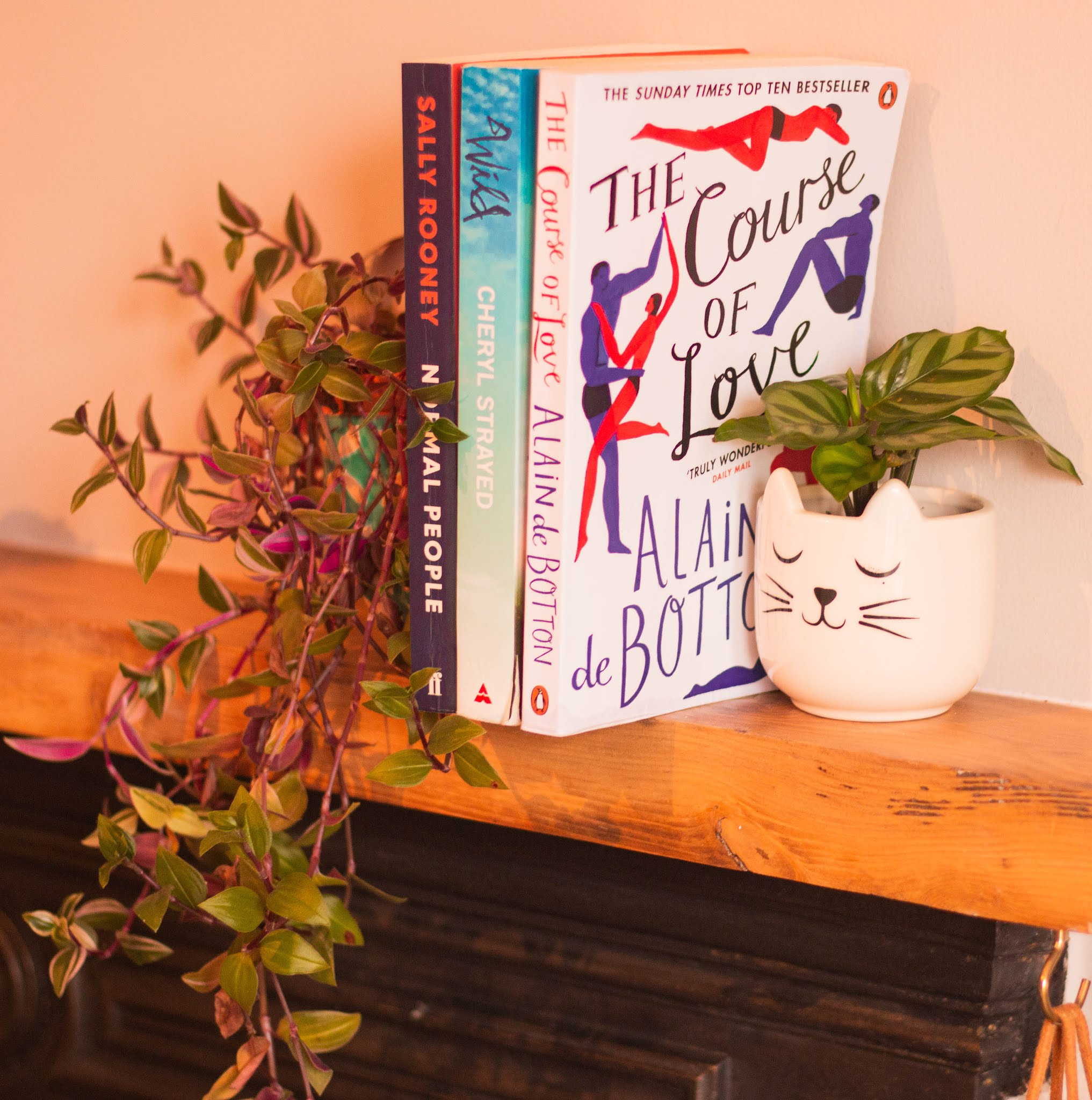 What I've been reading: Books reviews on Normal People, Wild and The Course of Love