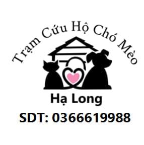 Trạm Cưu Hộ Chó Mèo Hạ Long _ Quảng Ninh