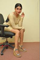 Actress Pooja Roshan Stills in Golden Short Dress at Box Movie Audio Launch  0088.JPG