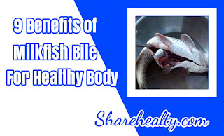 9 Benefits of Milkfish Bile For Healty Body