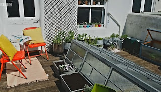 Amy's Brighton Garden