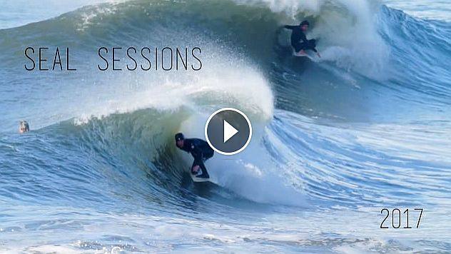 Seal Sessions Pt 2 2017