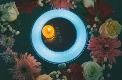 Playbulb Solar
