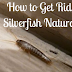How to Get Rid of Silverfish Naturally
