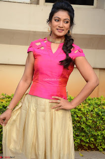 Ashmita in Pink Top At Om Namo Venkatesaya Press MeetAt Om Namo Venkatesaya Press Meet (27).JPG