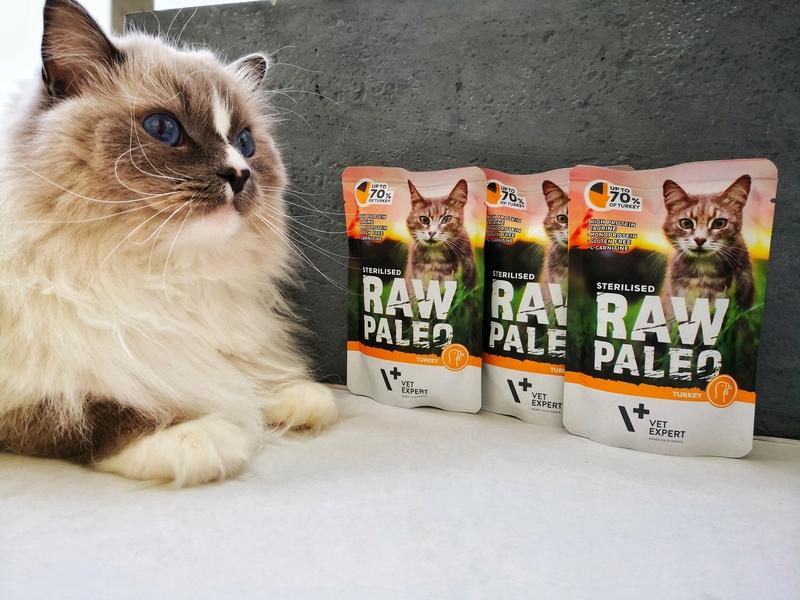 raw paleo sterilised, raw paleo opinie, raw paleo recenzja, vetexpert, plebiscyt sfinksy, sfinksy 2020, kot warszawski