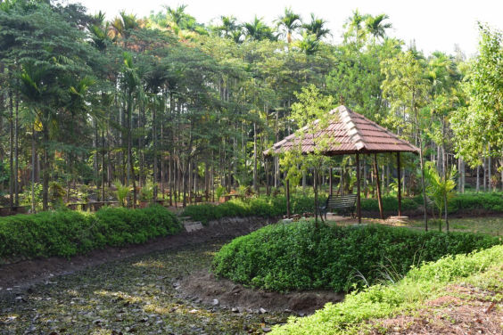 Inteyoga Ashram Pond Scenic View