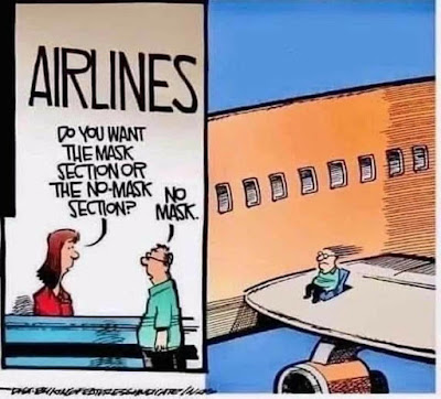 What section of the plane would you like,,,