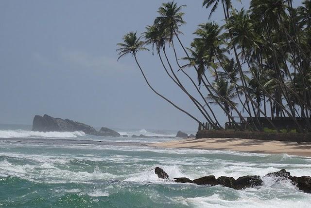 Шри-Ланка: отдых со вкусом чая и солнца