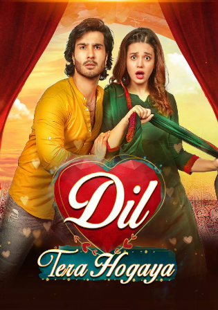 Dil Tera Hogaya 2020 WEB-DL 280Mb Urdu Movie Download 480p