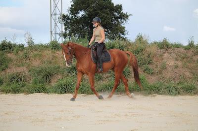 Couple cavalier-cheval pour réseaux sociaux.