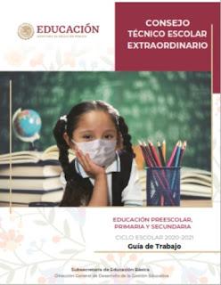 Guía de Consejo Técnico Escolar extraordinario del Ciclo Escolar 2020-2021 para Educación preescolar, primaria y secundaria
