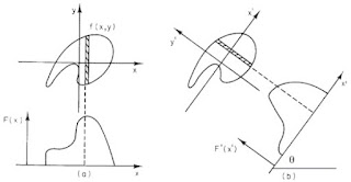 Fig. 12.12 from Intermediate Physics for Medicine and Biology, showing how to do a projection.