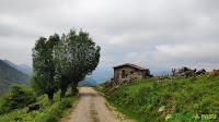 Cabaña en la zona de Texu Fresnu, Onís