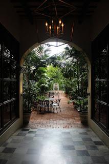 the indoor-gardening