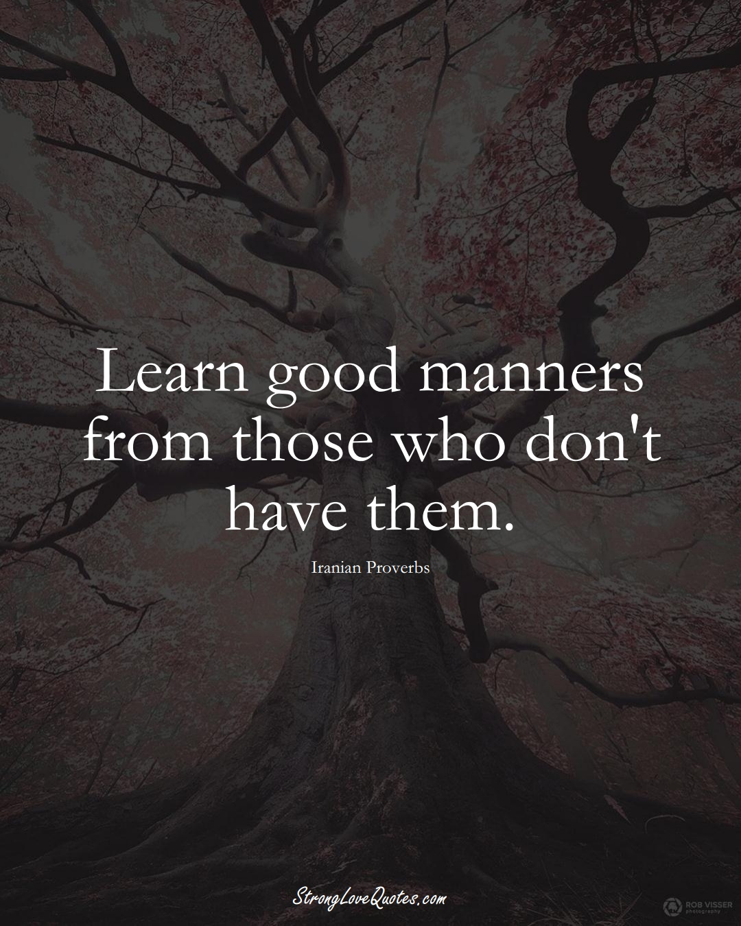Learn good manners from those who don't have them. (Iranian Sayings);  #MiddleEasternSayings