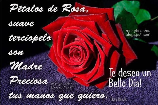 bello poema para la madre feliz dia de las madres rosa roja