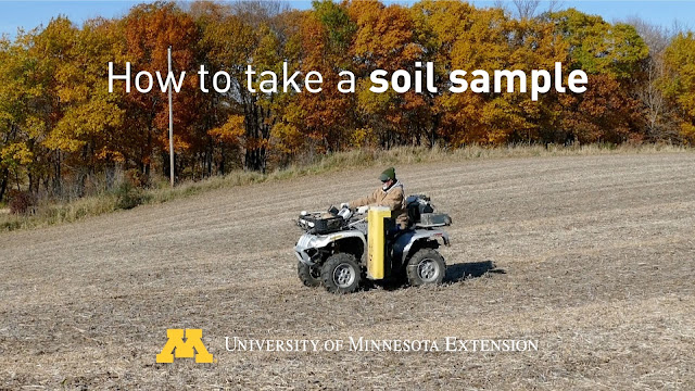 soil sample farm minnesota corn soybean fertilizer