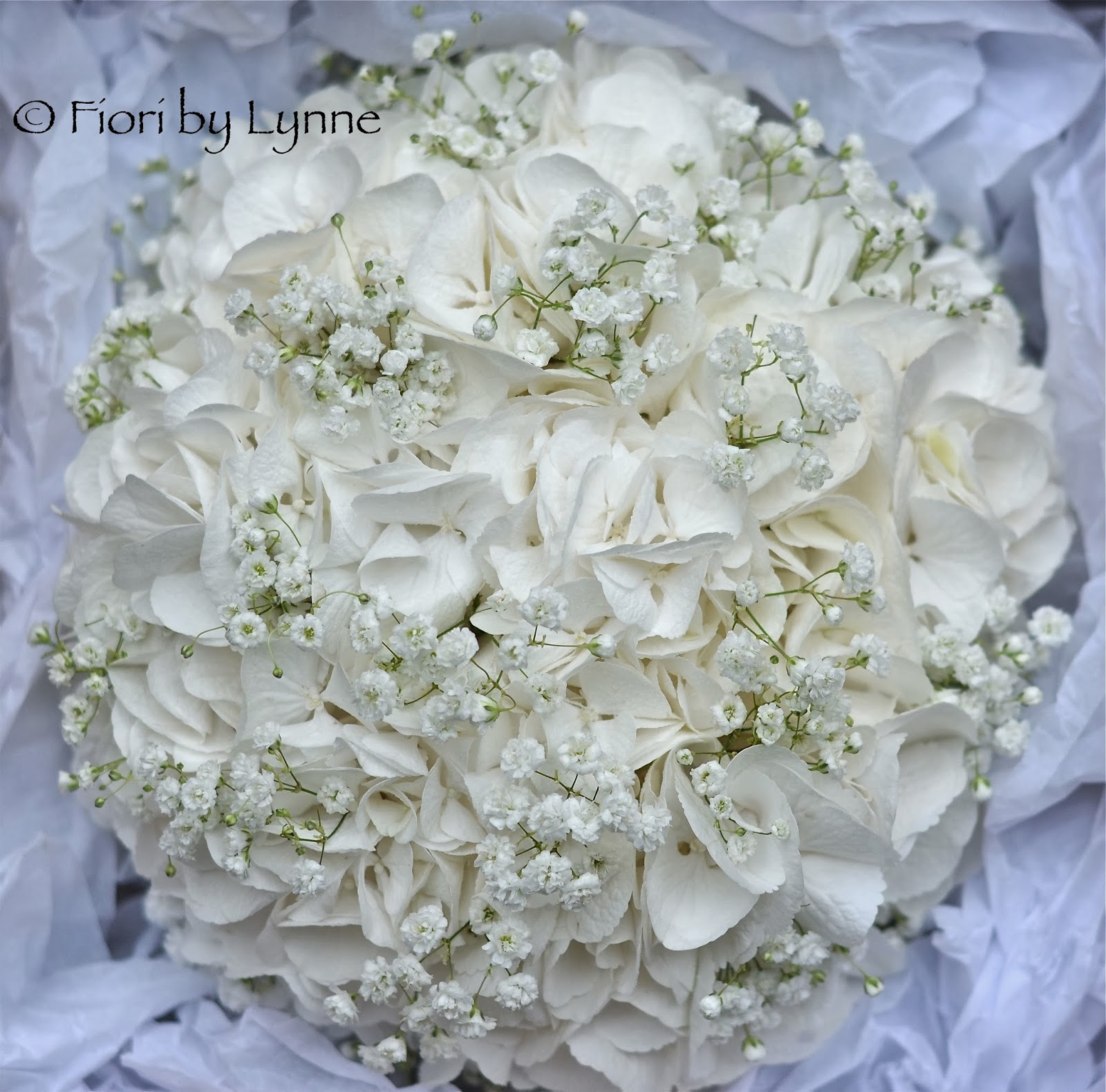 Wedding White Hydrangea: Wedding Flowers Blog: December 2013