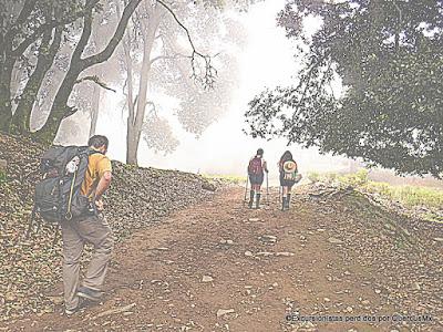 Neblina en Cerro Viejo - Excursionistas Perdidos