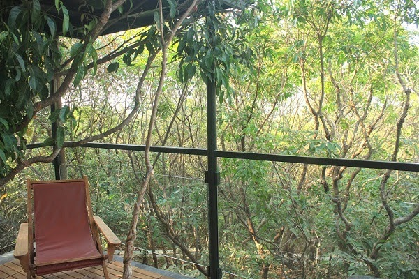 The machan jungle stay