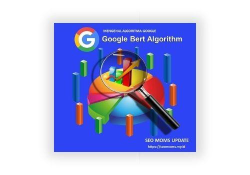 sejarah seo algoritma google