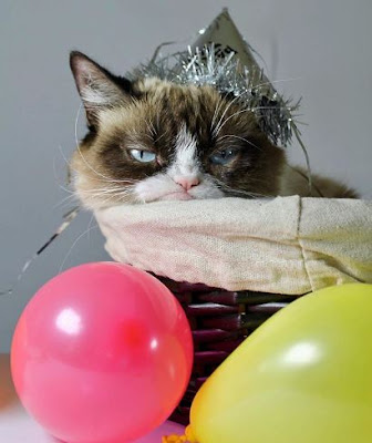 GRUMPY CAT DEATH BELOVED PET AND INTERNET MEME SENSATION DIES