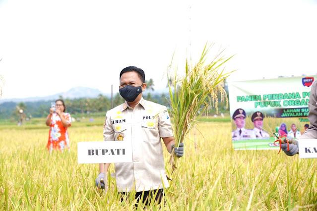 Petani di Kampung Kaili Bantaeng Tak Lagi Bergantung dengan Pupuk Subsidi