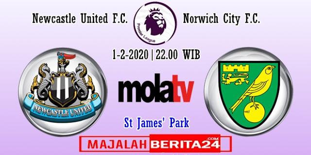 Prediksi Newcastle United vs Norwich City — 1 Februari 2020