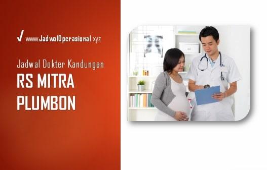 Jadwal Dokter Kandungan RS Mitra Plumbon