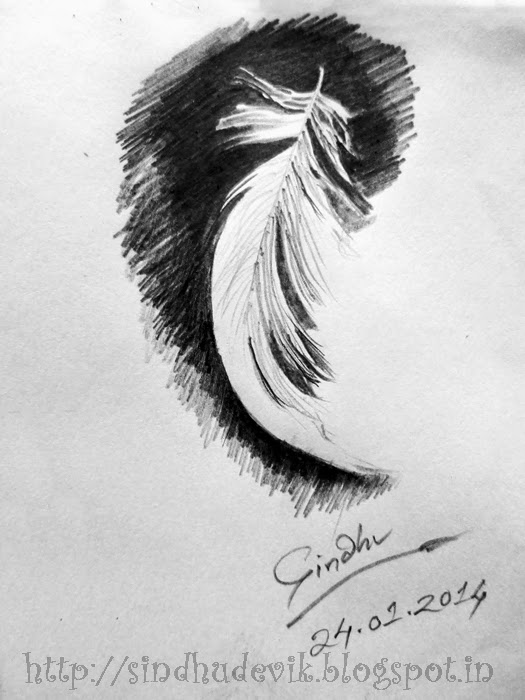 A Feather - A Pencil Sketch