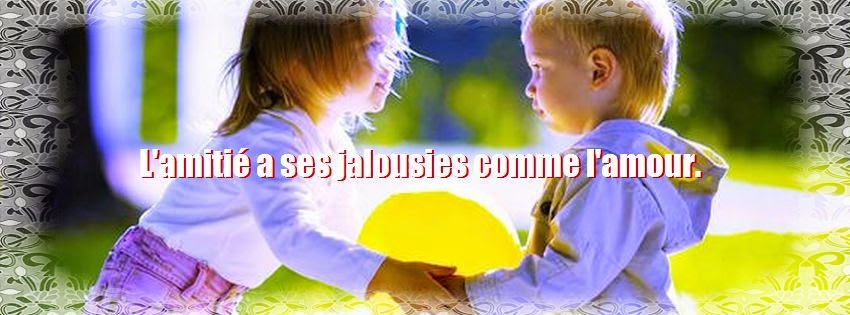 Phrase et citation d'amitié jalousie