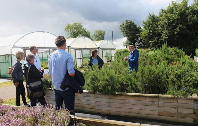 Jekka McVicar takes us through the many herbs that make up the Herbetum