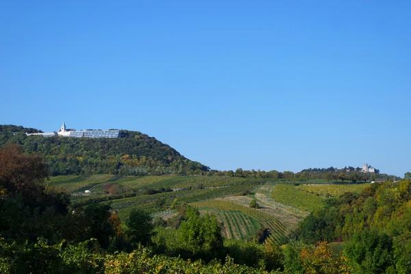 vienne weinwandertag randonnée vignes döbling kahlenberg neustift nussdorf