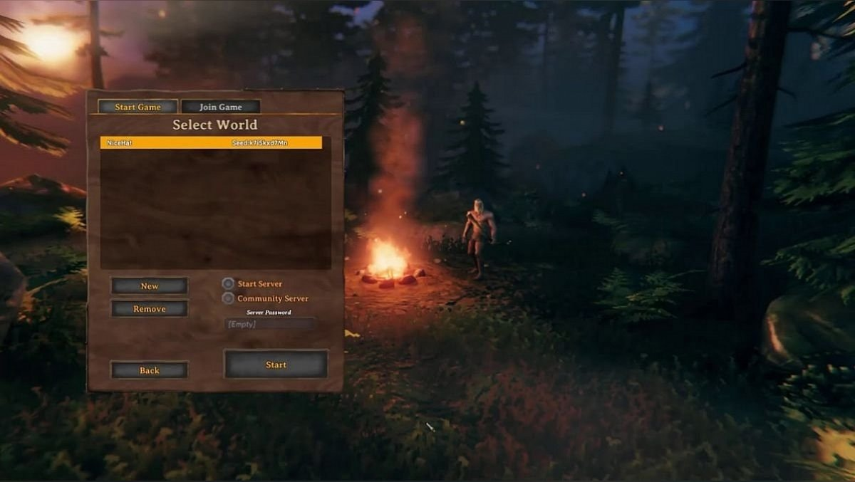 Co-op in Valheim - how to play with friends and other players on Valheim servers