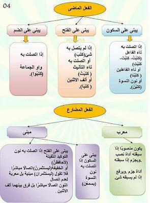 خطاطات رائعة لقواعد اللغة العربية للتعليم الابتدائي