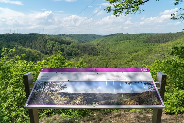 Traumschleife Dünnbach-Pfad - Saar-Hunsrück-Steig  Premiumwanderweg Kastellaun  Wandern im Hunsrück 02