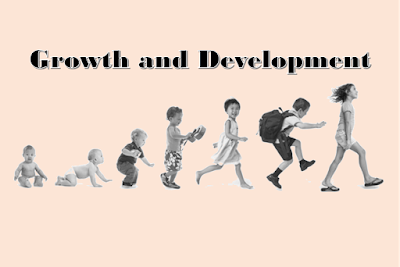 Things that promote growth and development