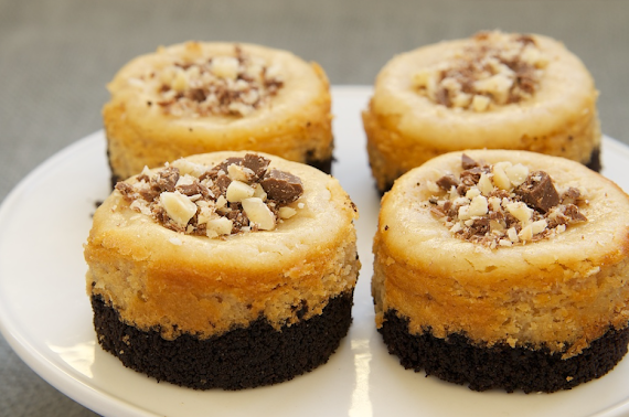 Peanut Butter Mini Cheesecakes: How to Make Perfect Topped with Chocolate Ganache