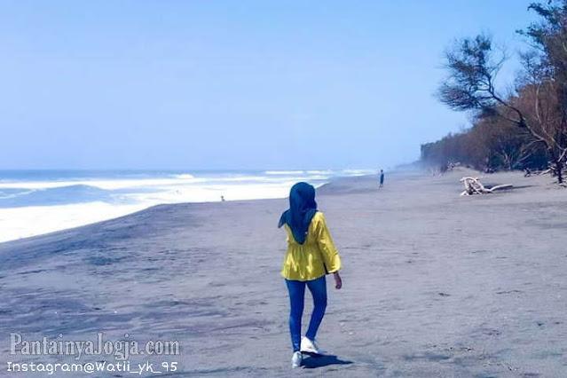 Alamat Dan Harga Tiket Masuk Lokasi Wisata Pantai Goa Cemara Bantul,Jogjakarta.