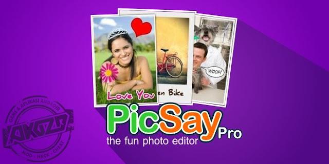 Download PicSay Pro v1.8.0.5 Apk Photo Editor Terbaru