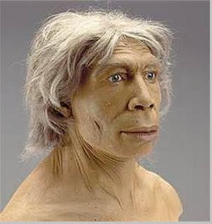 Homo Neanderthalensis - pustakapengetahuan.com